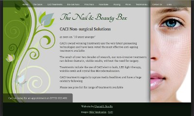 The website is light grey with a floral pattern on the left and a picture of a beautiful woman on the right of the central, cursive content. A semi-transparent horizontal menu bar runs along the top.